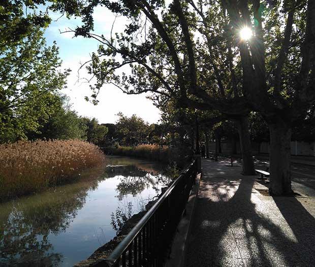 El Canal Imperial de Aragón a su paso por el Paseo de Colón