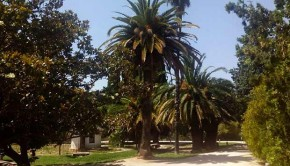 Jardín Botánico de Zaragoza