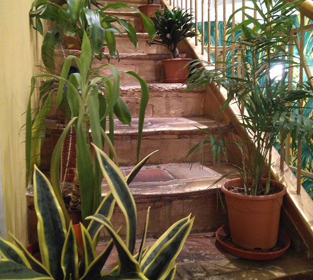 Escaleras en la planta de arriba del Méli del Tubo