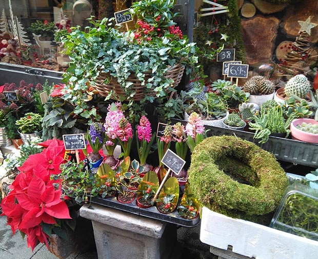 los jardines de pul floristeria en zaragoza