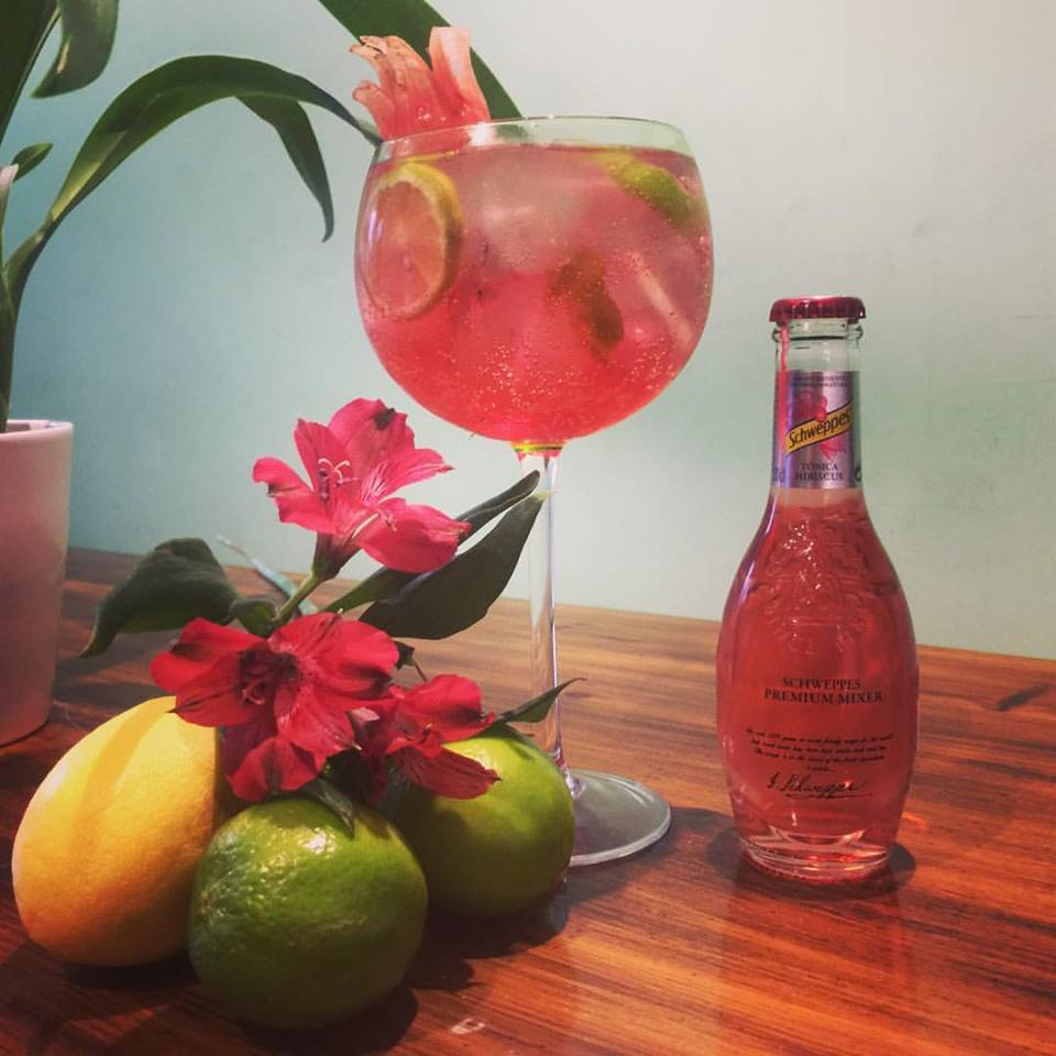 gin tonic en el marinaela