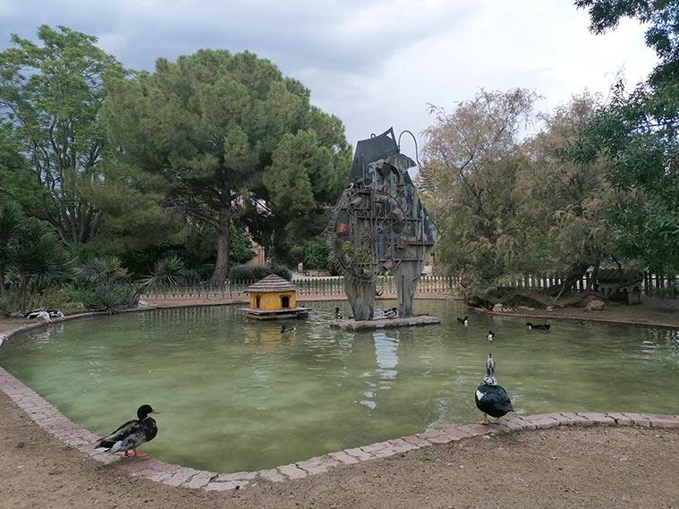 patos en el jardin botanico de zaragoza