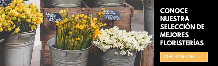 conoce nuestra seleccion de floristerias en zaragoza