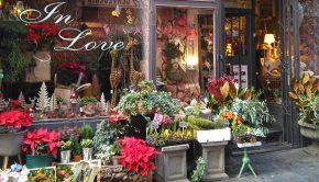 Floristerías con encanto de Zaragoza