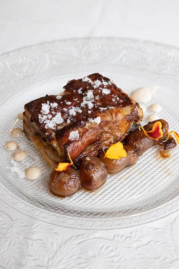 plato de ternasco en el restaurante la garnacha de zaragoza