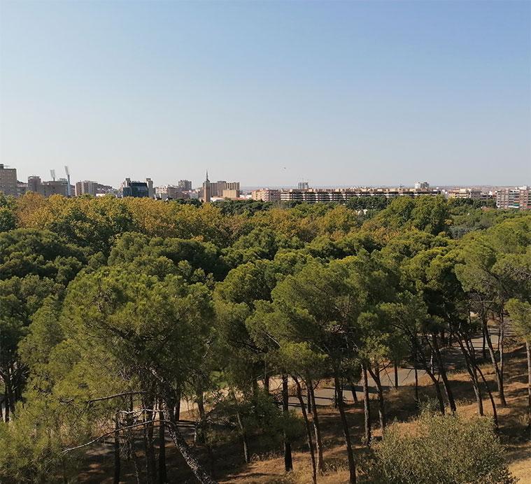 El mirador del Cabezo permite contemplar unas magníficas vistas del parque y sus alrededores