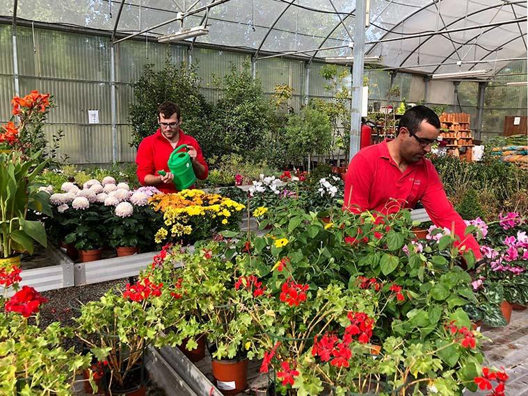 Gardeniers flores y plantes en Zaragoza