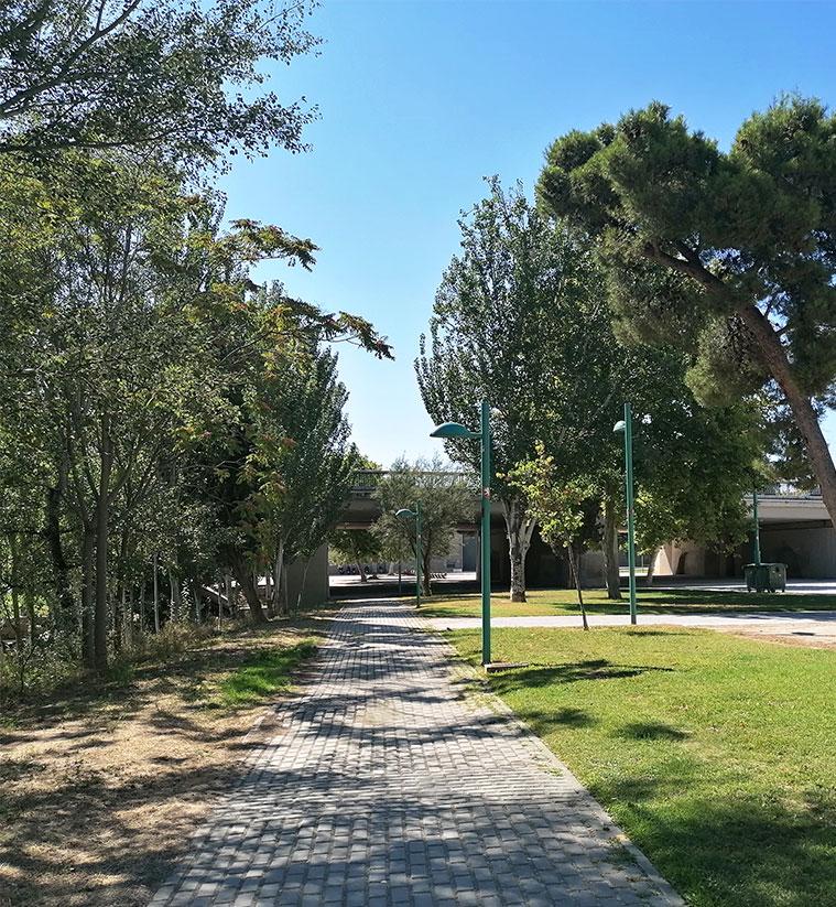 Paseando por la Ribera del Ebro a la altura del Parque de Macanaz