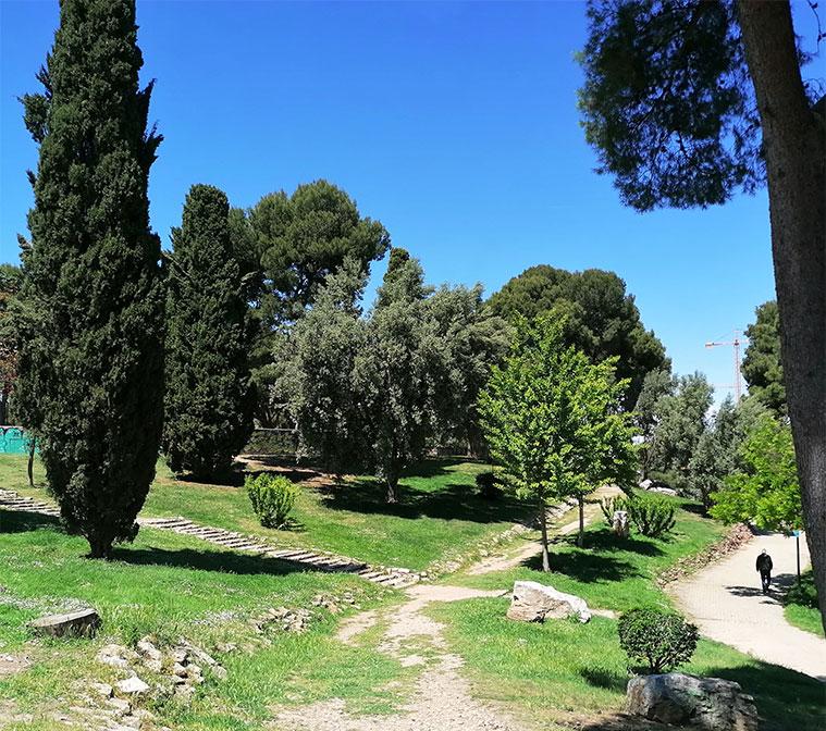 Vista del Parque Palomar desde la parte alta