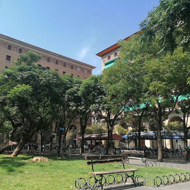 jardines centrales de la plaza san francisco
