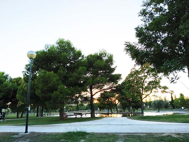 Atardecer en el parque del Tío Jorge