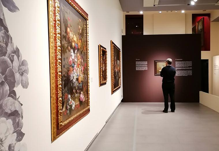 """Visitante observando una obra exposición """"De Rubens a Van Dyck"""""""