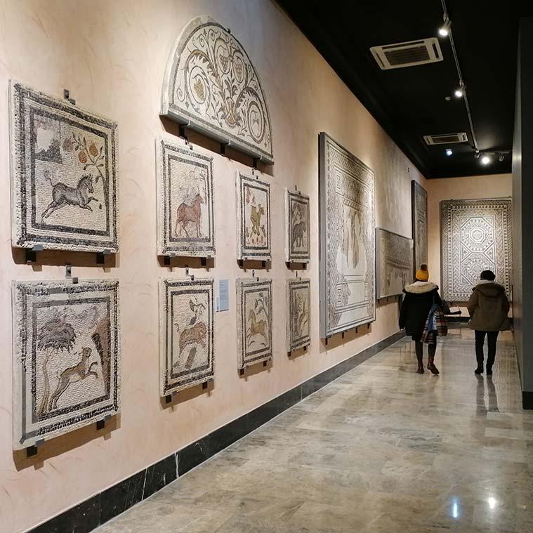 Mosaicos romanos en el Museo de Zaragoza