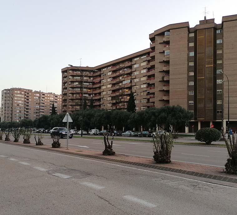 El Parque Miraflores visto desde la Avenida Cesareo Alierta