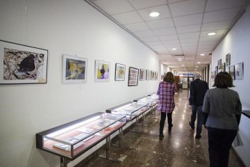 Espacio Joven Ibercaja - Biblioteca José Sinués