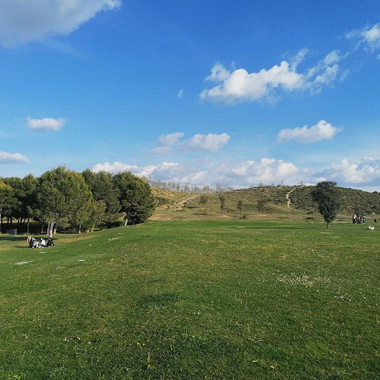 el parque del barranco y los pinares de venecia al fondo