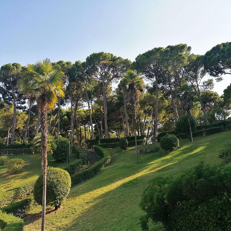 Más de 150 plantas de 20 especies diferentes componen el Jardín de Invierno