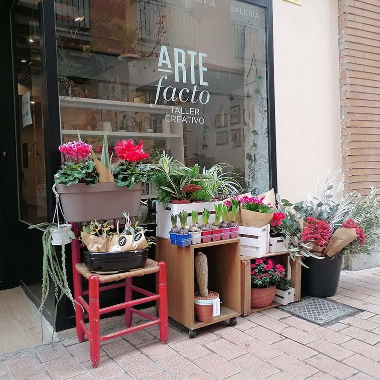 Artefacto Taller Creativo floristeria zaragoza