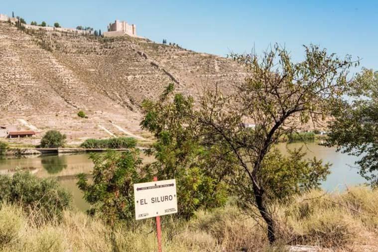 Escapada a Mequinenza desde Zaragoza