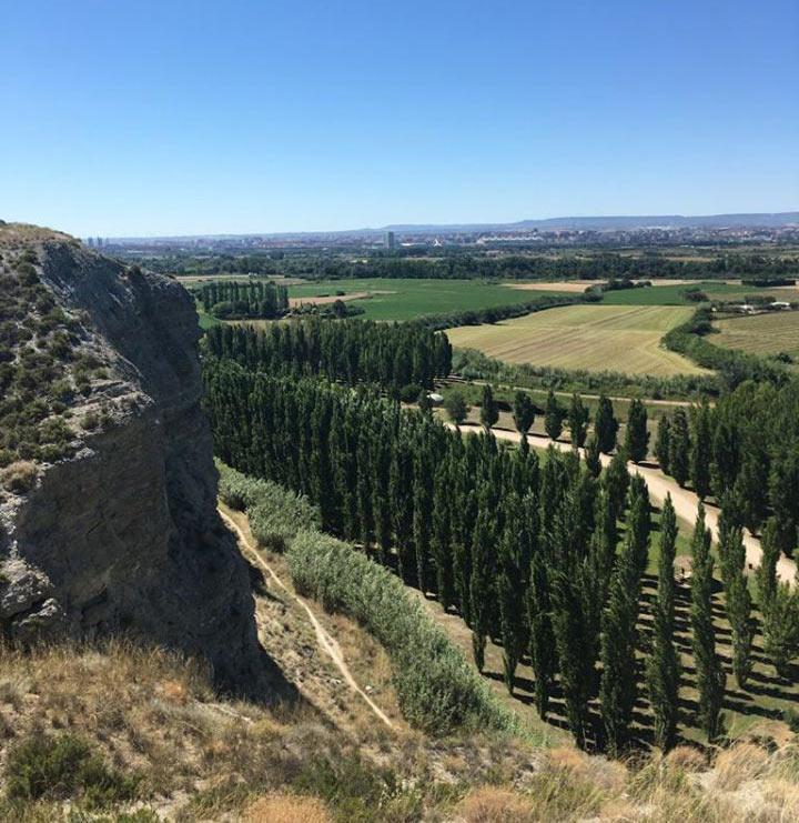 Vista de Zaragoza desde el Galacho de Juslibol