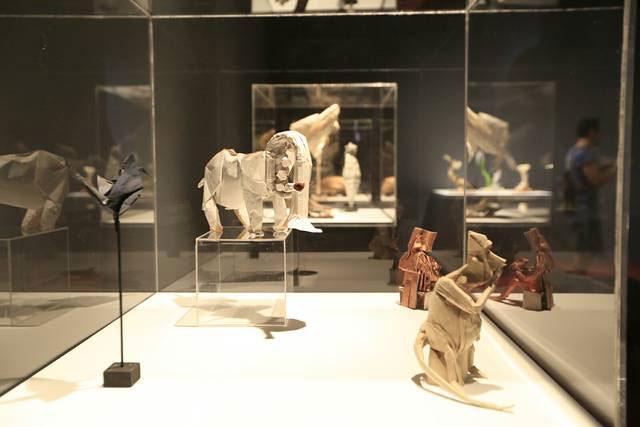 exposicion en la Escuela Museo Origami de Zaragoza