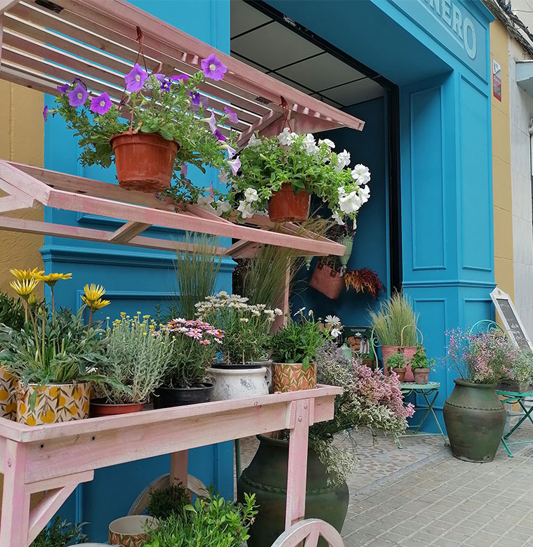 El Buen Jardinero floristeria en zaragoza