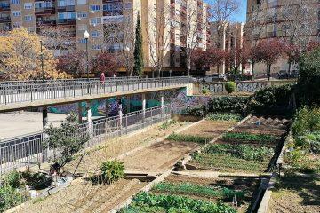Huertos en el Jardín de la Memoriaen San José